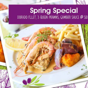 Spring Special at Olive & Oil